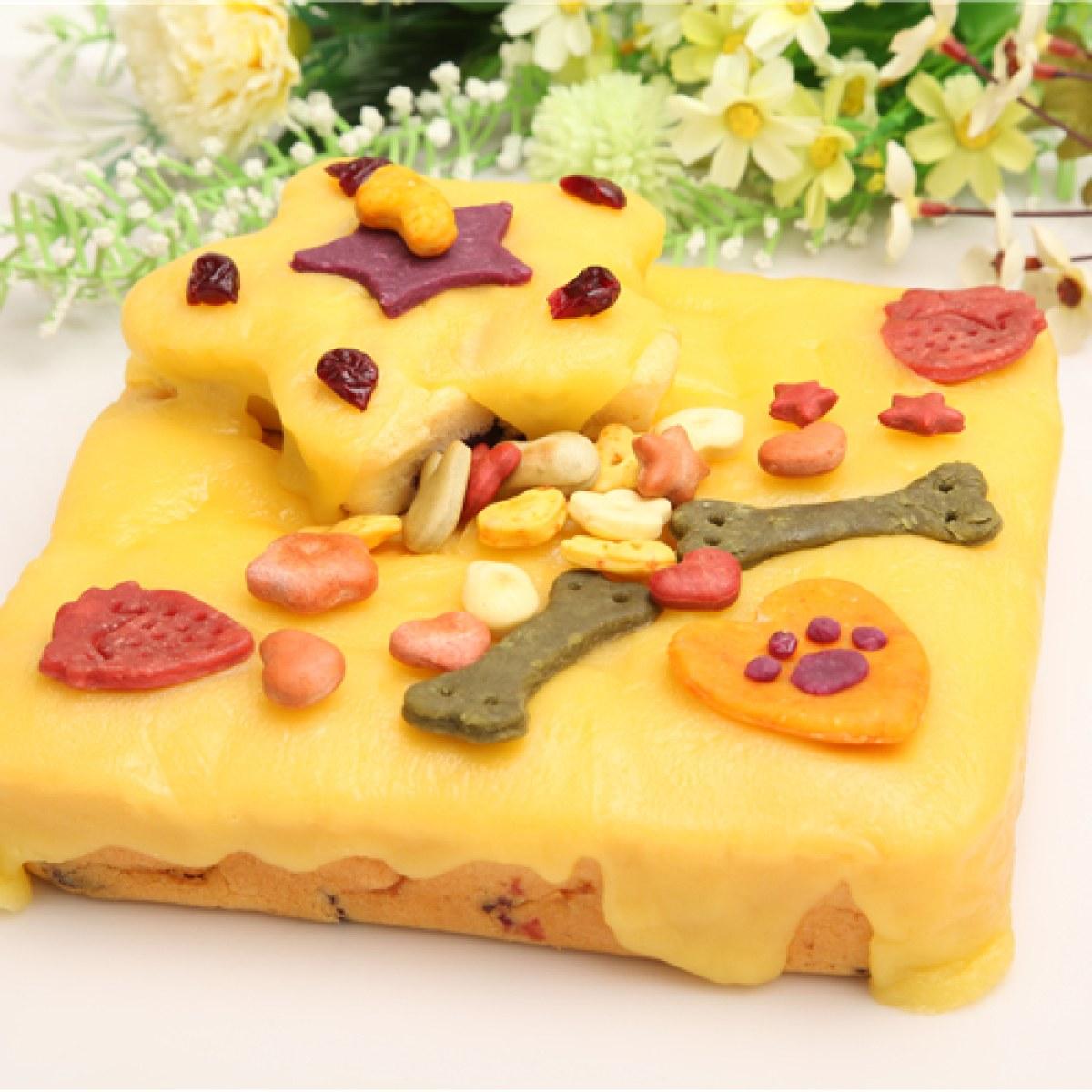 海盗狗 手工自制 8寸 狗狗生日蛋糕 宠物蛋糕